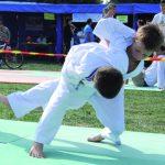 2-judo