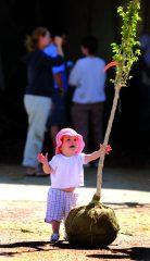 enfants regarde un arbre