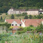 paysage de verdure avec les jardins