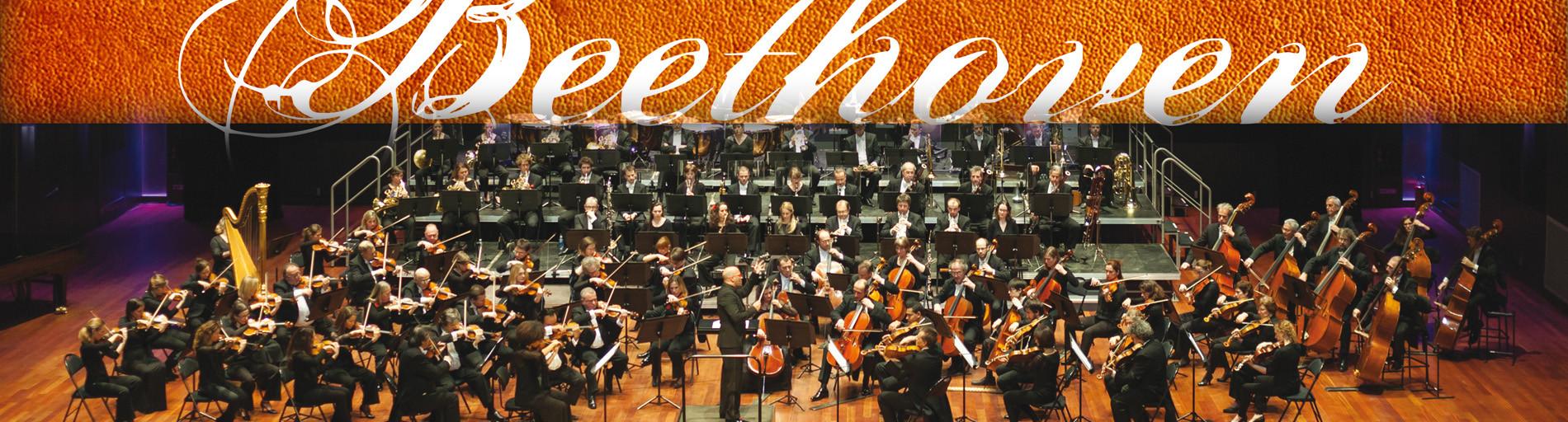 Concert de l'Orchestre National d'Ile-de-France « Beethoven »